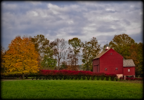 Fall Foliage in the Country