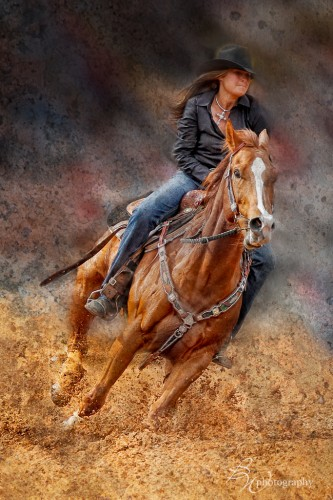 East meets West  ~ Western Horses & Cattle Photography Workshop