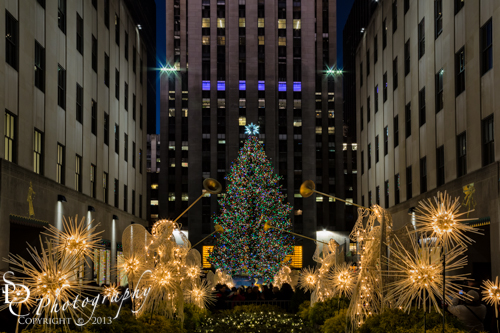 Rockefeller-Center-Christmas-Tree.jpg