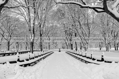 The-Mall-At-Central-Park-During-A-Snowstorm.jpg