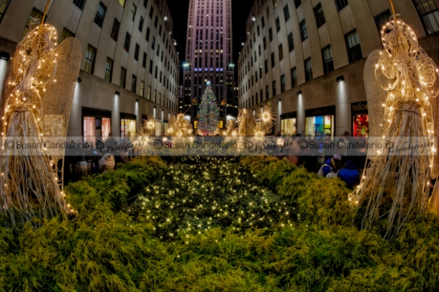Rockefeller Center  Christmas Tree NYC