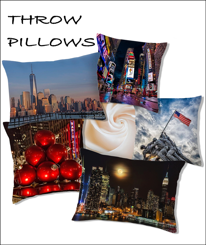 Home Decor Throw Pillows Susan Candelario SDC graphy