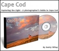 Cape Cod: Capturing the Light